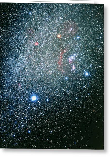 Orion, Canis Major & Monoceros Constellations Greeting Card by Luke Dodd