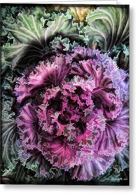 Ornamental Kale Greeting Card by Joan  Minchak