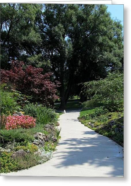 Oshawa Botanical Garden 4 Greeting Card by Sharon Steinhaus