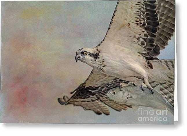 Osprey And Fish Greeting Card by Deborah Benoit