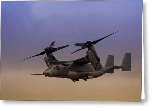 Osprey In Flight I Greeting Card