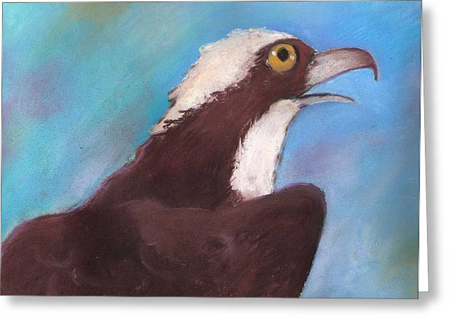 Osprey Greeting Card by Susan Herbst