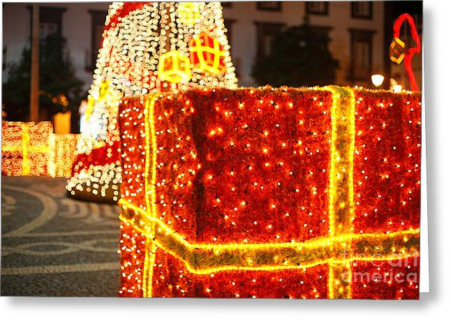 Outdoor Christmas Decorations Greeting Card by Gaspar Avila