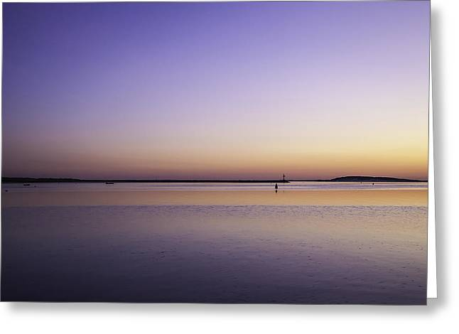 Outer Cape Cod Greeting Card by Kate Hannon