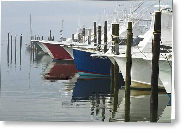 Greeting Card featuring the photograph Outerbanks Morning by Carrie Cranwill