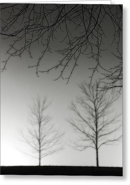 Outstretched Limbs Greeting Card