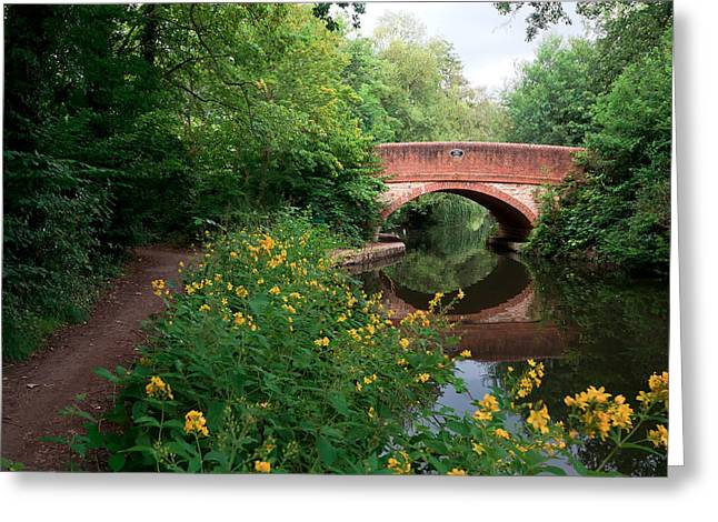 Over The Canal Greeting Card by Shirley Mitchell