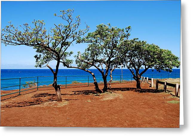 Greeting Card featuring the photograph Overlook In Maui by Caroline Stella