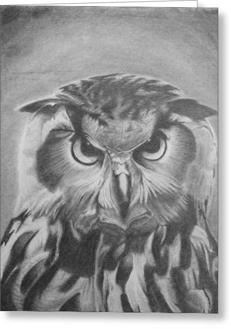 Owl Greeting Card by Chris Finster