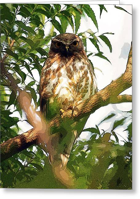 Greeting Card featuring the digital art Owl In Contemplation by Pravine Chester