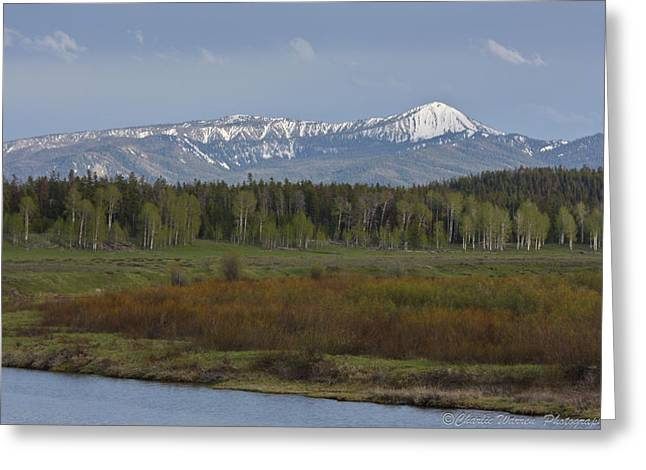 Oxbow Bend Greeting Card by Charles Warren