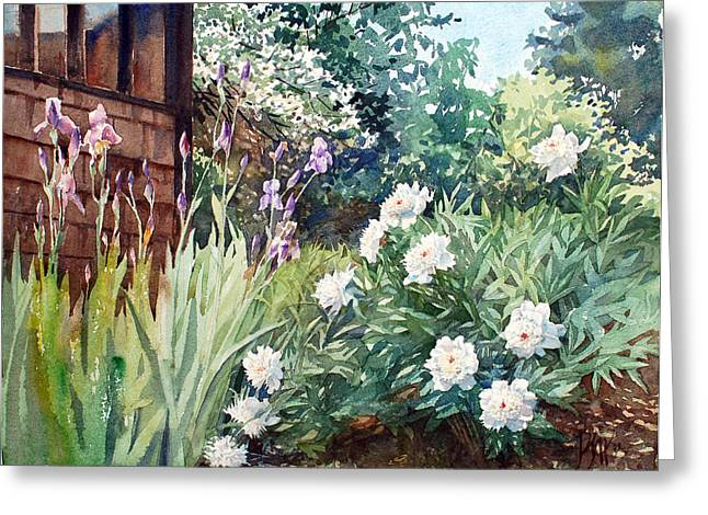 Oxenden Peonies Greeting Card by Peter Sit
