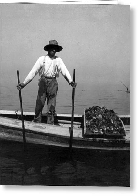 Oyster Fishing On The Chesapeake Bay - Maryland - C 1905 Greeting Card