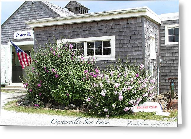 Oysterville Sea Farm Cooked Crab Greeting Card by Glenna McRae