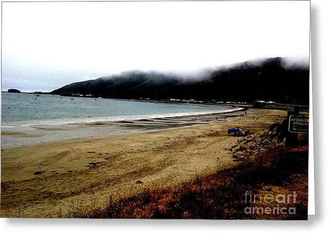 Pacific Coast Greeting Card by J Von Ryan