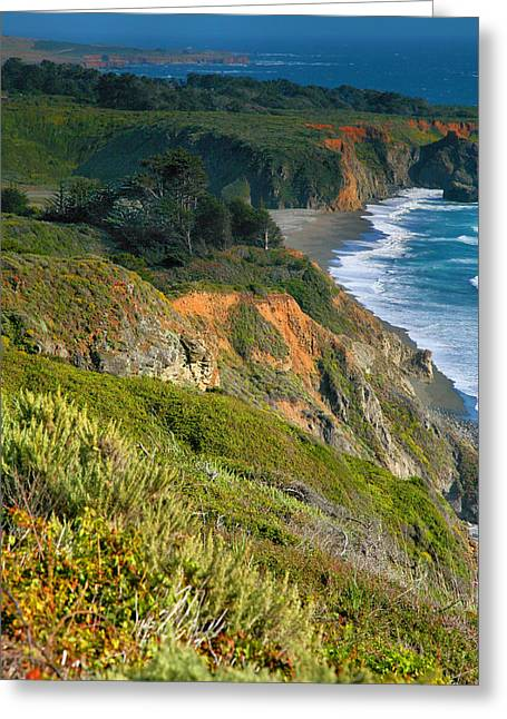 Pacific Shoreline Vii Greeting Card by Steven Ainsworth