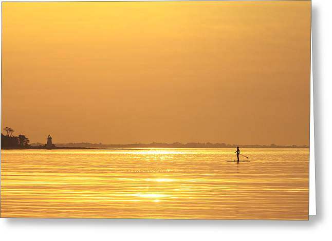 Paddle Boarder At Dawn Greeting Card by Stephanie McDowell