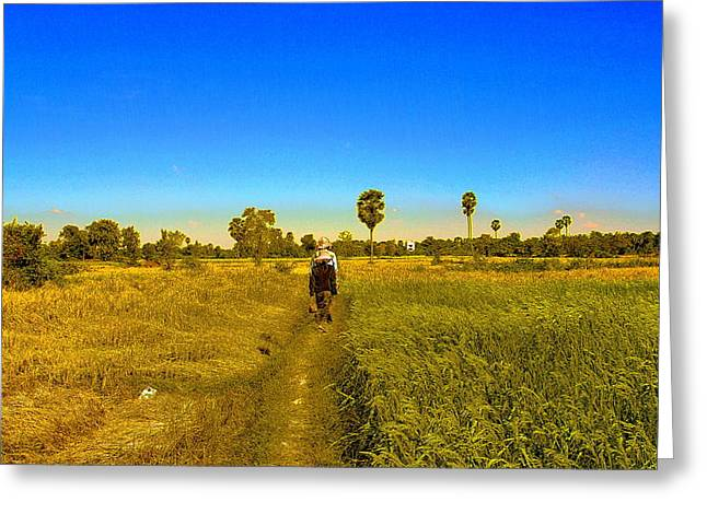 Greeting Card featuring the photograph Paddy Field by Arik S Mintorogo