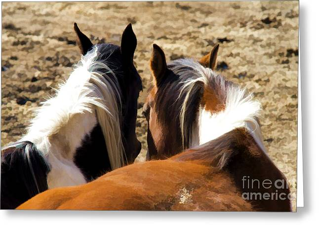 Painted Horses IIi Greeting Card