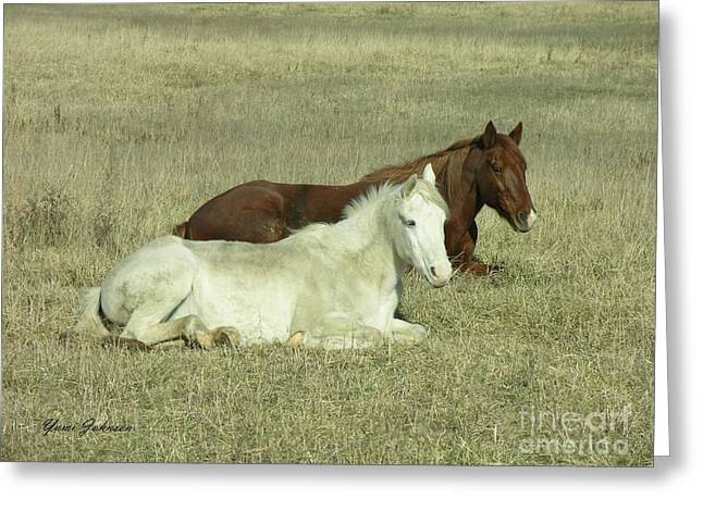 Greeting Card featuring the photograph Pair Of Horses by Yumi Johnson