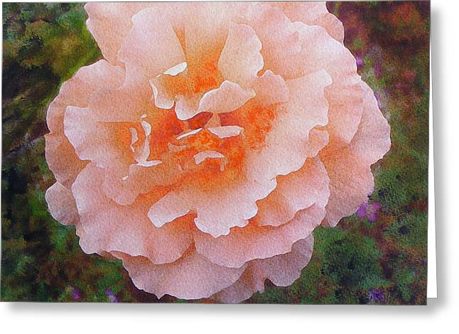 Greeting Card featuring the painting Pale Orange Begonia by Richard James Digance