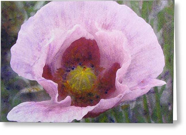 Greeting Card featuring the painting Pale Pink  Poppy by Richard James Digance