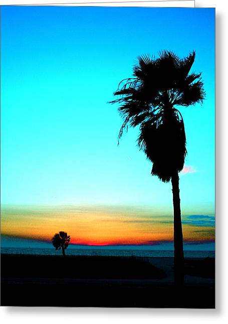 Palm Set Greeting Card by Darren Cole Butcher
