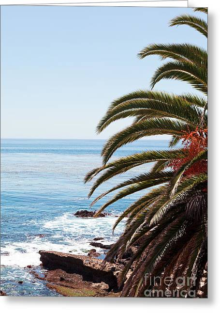 Palm Tree And Ocean Greeting Card by Paul Velgos