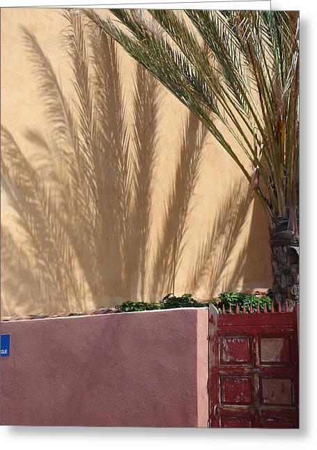 Palm Tree Shadow Greeting Card by Christopher Mullard