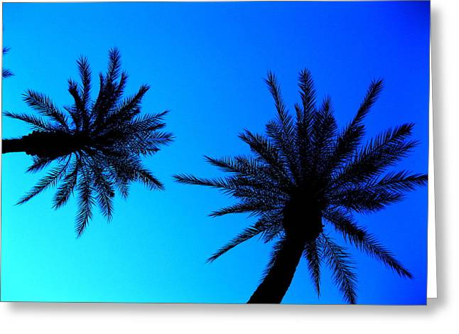 Palm Trees At Dusk Greeting Card