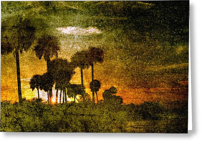 Palm Trees In Florida Greeting Card by Skip Nall