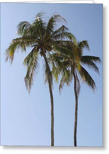Palm Trees In Love Greeting Card by Natalija Wortman