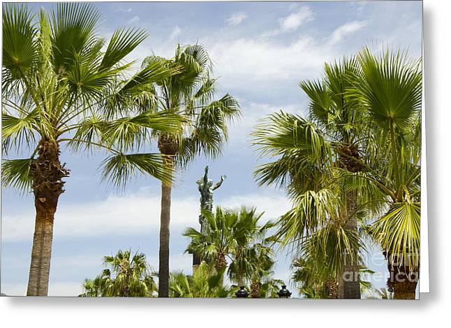 Palm Trees In Spain Greeting Card by Perry Van Munster