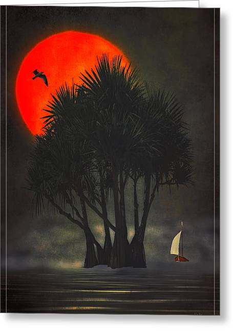 Palm Trees In The Sunset Greeting Card by Tom York Images