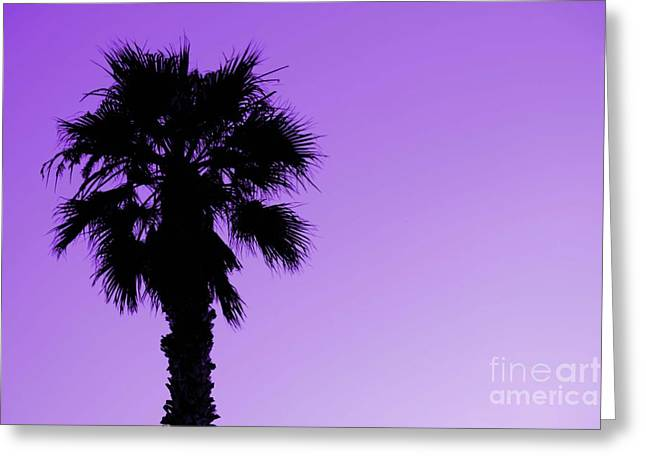 Palm With Violet Sky Greeting Card