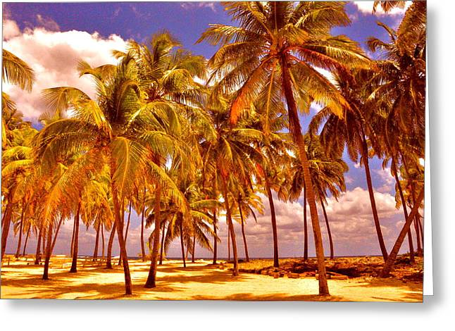 Palms On Half Moon Caye II  Greeting Card by Valerie Rosen