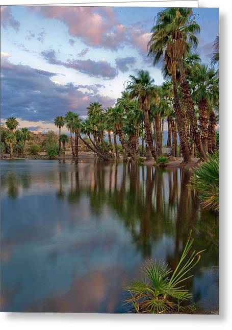 Palms Trees Over Papago Lake Greeting Card by Dave Dilli