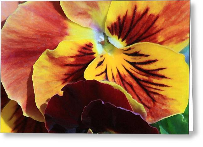 Greeting Card featuring the photograph Pansies by Donna Corless