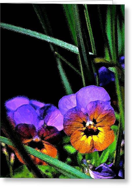 Pansy 5 Greeting Card by Pamela Cooper