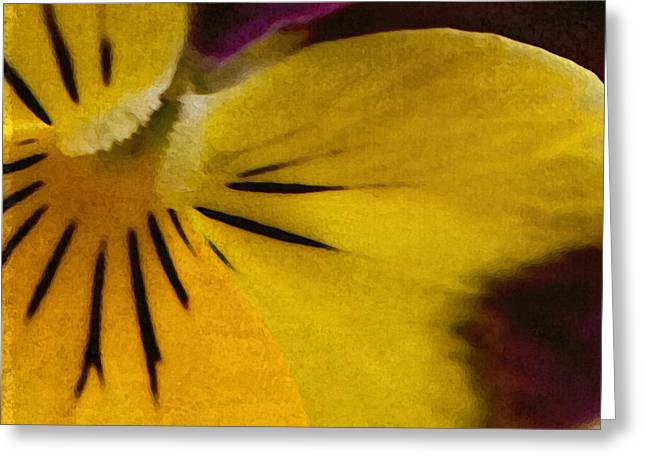 Pansy Greeting Card by Bonnie Bruno