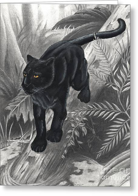 Panther By The Water Greeting Card