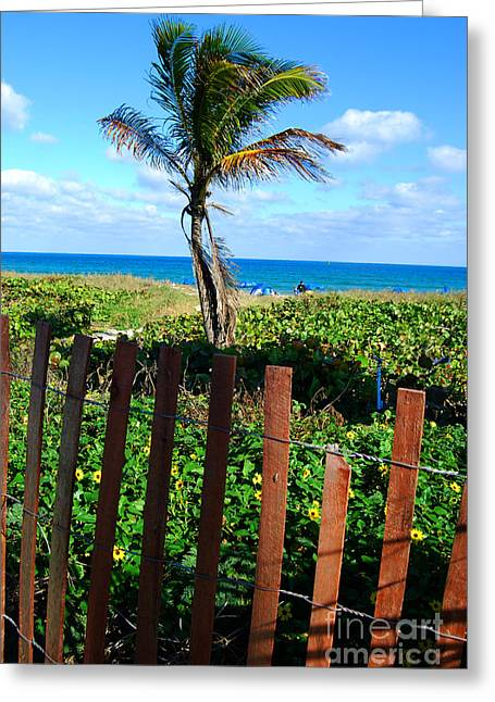 Paradise Beyond The Fence Line Greeting Card by Linda Mesibov