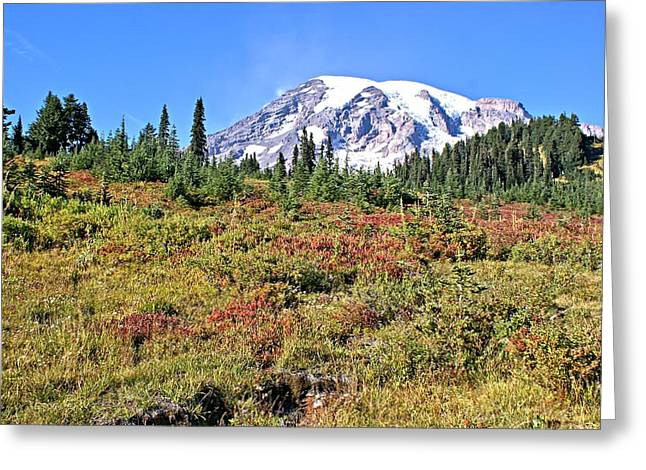 Paradise In Fall On Mt. Rainier 2 Greeting Card