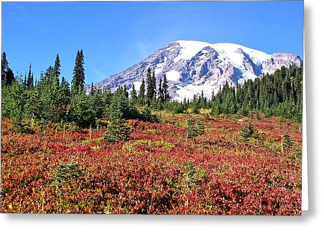 Paradise In Fall On Mt. Rainier  Greeting Card