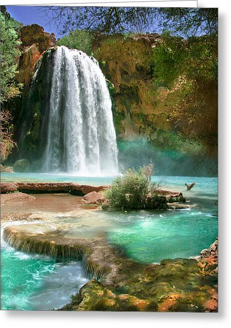 Paradise Greeting Card by PMG Images
