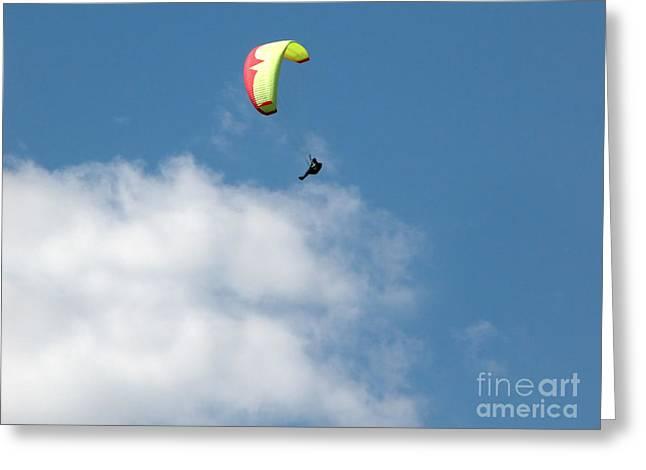 Paraglider Greeting Card by Cindy Singleton