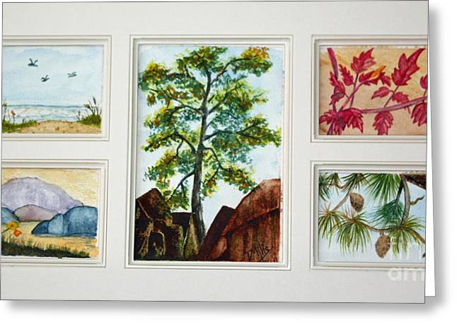 Parcels Of Nature Greeting Card by Terri Mills