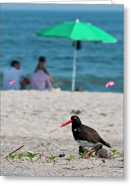 Parenting On A Beach Greeting Card