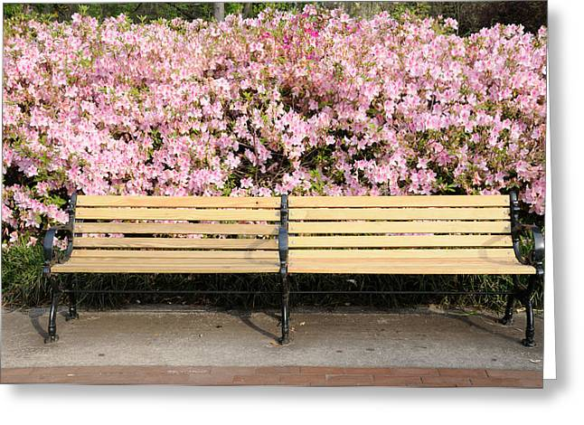 Greeting Card featuring the photograph Park Bench And Azaleas by Bradford Martin