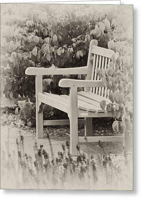 Park Bench Greeting Card by Bill Barber